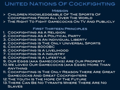 UNITED NATIONS OF COCKFIGHTING FIRST THIRTEEN PRINCIPLES OF COCKFIGHTING FROM ALL OVER THE WORLD