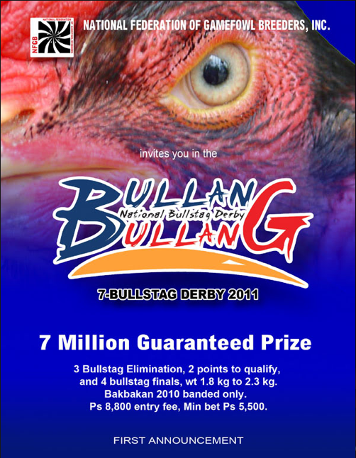 Bullang Bullang 2011 7-Bullstag Derby Starts on April 14 and Ends on